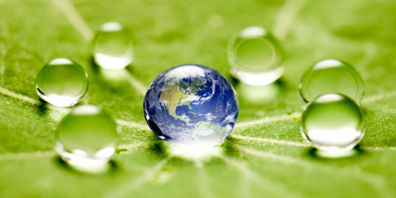 Environmental awareness, regenerative design.